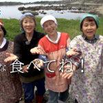 159_海プロCM4_ ひより会