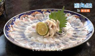 29_番組動画20_土崎のふぐ