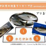 243_潟上市の地魚ランキング