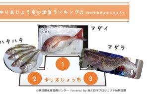 248_由利本荘市の地魚ランキング